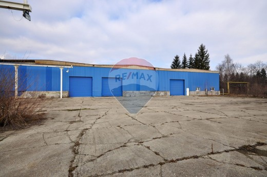 Spatiu industrial de vanzare in Zarnesti, Periferie - 6000 mp, 240000 euro