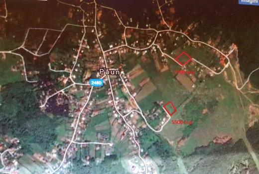 Teren de vanzare in Iasi, Barnova, Bucium, Paun - 5500 mp, 11.0 EUR